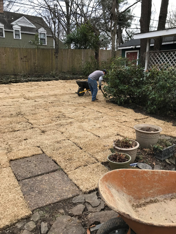 Buntyn Home Sod Installation