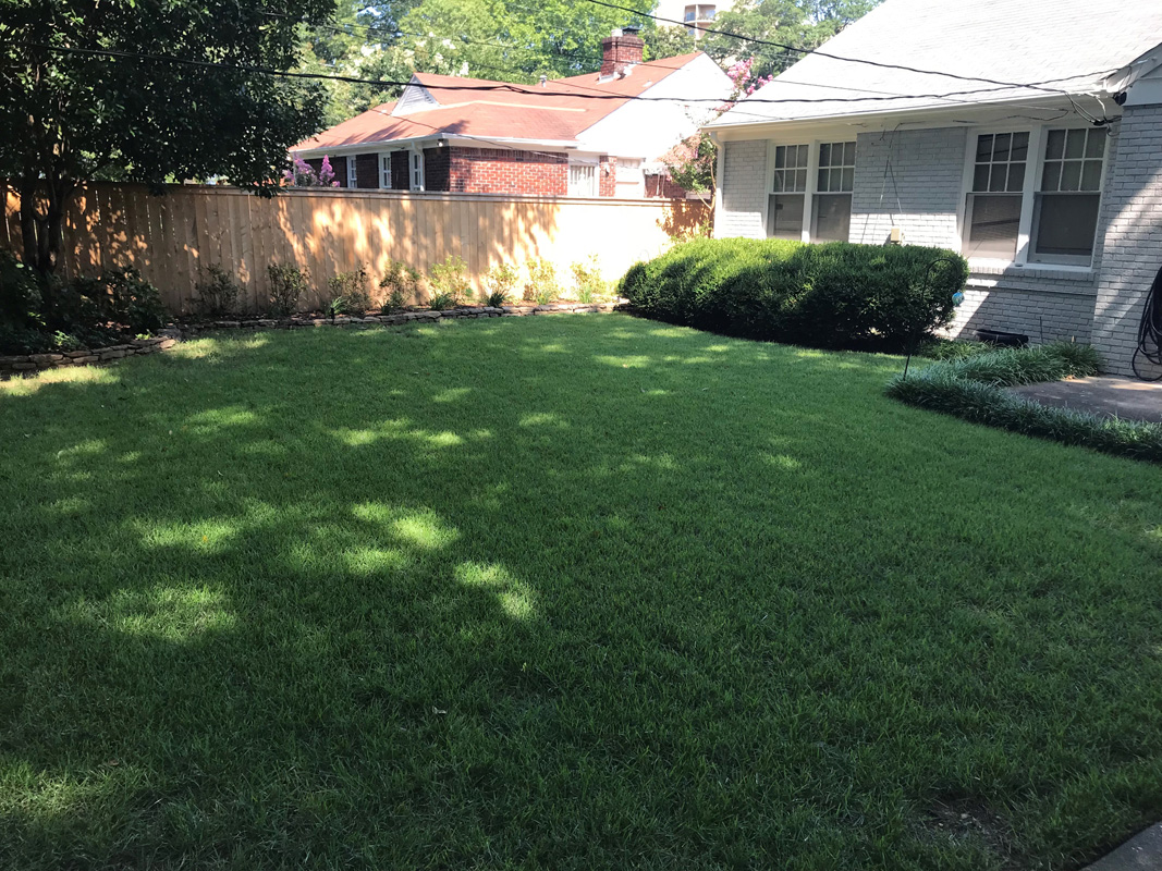 Kenwood Ave Landscaping