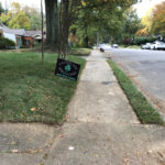 Sod Installation on Alexander - Buntyn Neighborhood