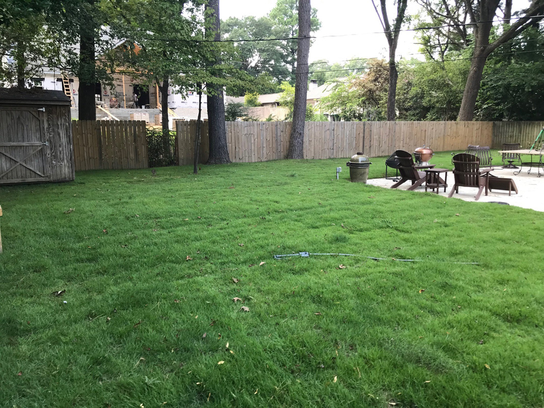 Two Months After Sod Installation Completed