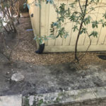 French Drain around home