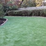 East Memphis Artificial Turf Project