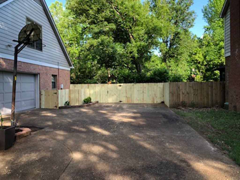 Carter's Landscape Renovation